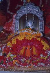 love guru dharmandra shastri
