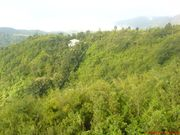 Land for Sale or Rent in Luangmual,  Aizawl,  Mizoram